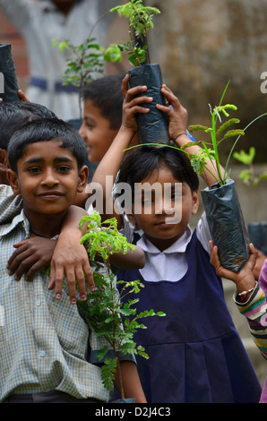 Children planting trees, India - Stock Photo