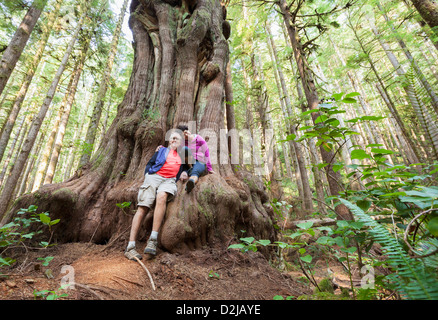 A couple sit on a giant saturn cedar tree in avatar grove; vancouver island british columbia canada - Stock Photo
