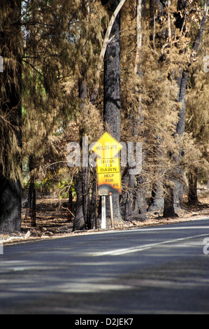 Fire damage from the Victorian Bushfires of 2009 was widespread - Stock Photo