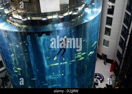 Berlin, Germany, in divers Aquadom of sealife at Hotel Radisson SAS - Stock Photo