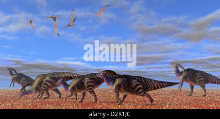 A herd of Parasaurolophus dinosaurs migrate through a desert searching for better vegetation. - Stock Photo