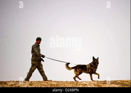 A US Air Force Staff Sergeant and military working dog handler runs his military working dog Karo through an explosive - Stock Photo