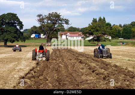 Tractor enthusiasts in renovated Massey Ferguson & Ferguson tractors in a ploughing match - Stock Photo