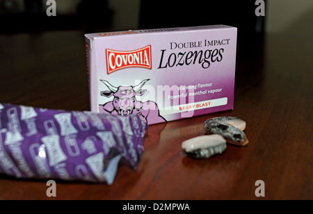 Covonia menthol berry flavoured lozenges to help with a cough and sore throat - Stock Photo