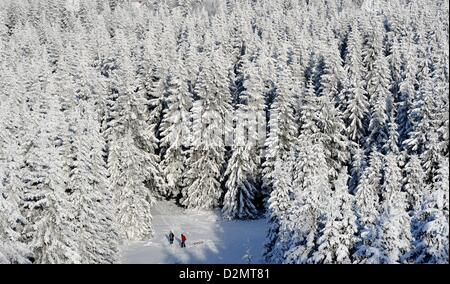 Winter in the Harz Mountains of Germany. Photo: Frank May - Stock Photo
