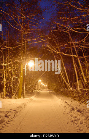 A beautiful late walk in the park on a snowy winter day in Poalnd - Stock Photo