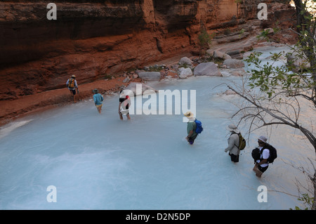 Hikers along the Havasu Creek, Colorado, United States of America, North America - Stock Photo