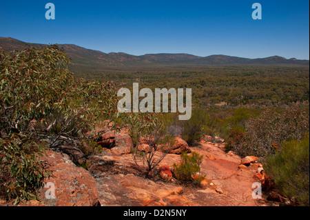 Flinders Ranges National Park, South Australia, Australia, Pacific - Stock Photo