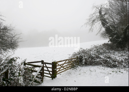 Freezing fog and snow in Essex - Stock Photo
