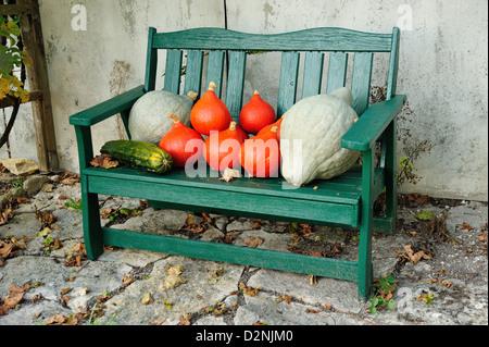 pumpkin speisekuerbis hokkaido cucurbita pepo kuerbis. Black Bedroom Furniture Sets. Home Design Ideas