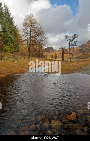 Bleamoss beck as it starts its journey from Blea tarn in the Lake District, Cumbria, England - Stock Photo