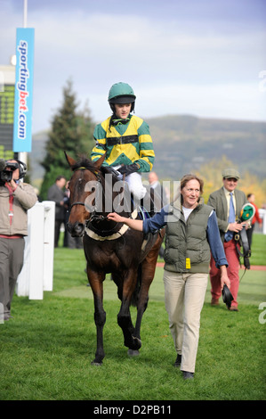 A winning horse and jockey are lead in to the winners enclosure at a childrens meeting at Cheltenham Racecourse, - Stock Photo