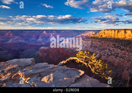 Pipe Creek Vista Point Overlook, South Rim, Grand Canyon National Park, Arizona, USA - Stock Photo
