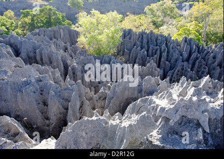 Tsingy de Bemaraha Strict Nature Reserve, near the western coast in Melaky Region, Madagascar - Stock Photo