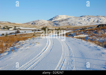 Road in winter snow, Dumfries and Galloway, Scotland, United Kingdom, Europe - Stock Photo