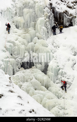Ice climbing on Grey Mare's Tail Waterfall, Moffat Hills, Moffat Dale, Dumfries and Galloway, Scotland, United Kingdom, - Stock Photo
