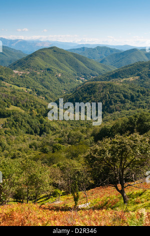 Pescaglia Mountains, Apuan Alps (Alpi Apuane), Lucca Province, Tuscany, Italy, Europe - Stock Photo