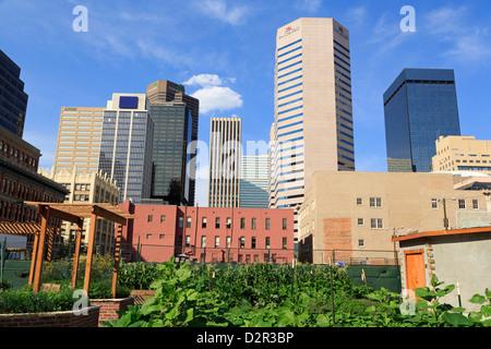 Skyline, Denver, Colorado, United States of America, North America - Stock Photo