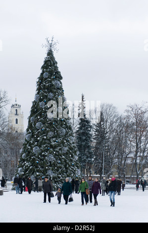 Large Christmas tree erected in Katedros square Vilnius, seen surrounded by snow as a families and tourists look - Stock Photo