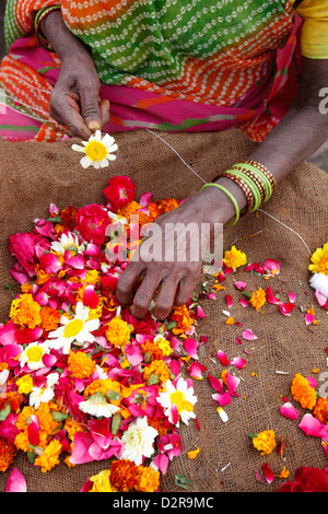Woman making and selling garlands outside a Hindu temple, Goverdan, Uttar Pradesh, India, Asia - Stock Photo