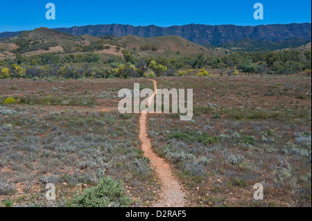 Dusty road leading in the Flinders National Park, South Australia, Australia, Pacific - Stock Photo