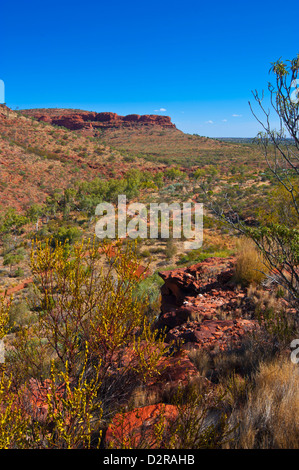 Kings Canyon, Northern Territory, Australia, Pacific - Stock Photo
