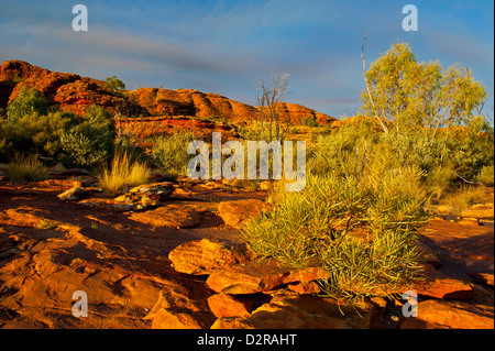 Kings Canyon, Northern Territory, Australia, Pacific - Stock Photo