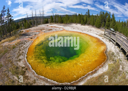 Morning Glory Pool, Upper Geyser Basin, Yellowstone National Park, Wyoming, USA - Stock Photo