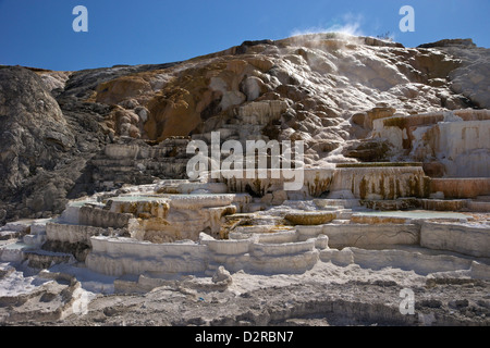 Palette Spring, Mammoth Hot Springs, Yellowstone National Park, Wyoming, USA - Stock Photo