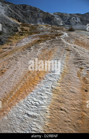 Mound Terrace, Mammoth Hot Springs, Yellowstone National Park, Wyoming, USA - Stock Photo