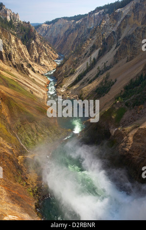 Brink of Lower Falls of Yellowstone River, Grand Canyon of the Yellowstone, Yellowstone National Park, Wyoming, - Stock Photo