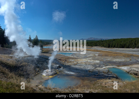 Fumaroles (steam vents) in Porcelain Basin, Norris Geyser Basin, Yellowstone National Park, Wyoming, USA - Stock Photo