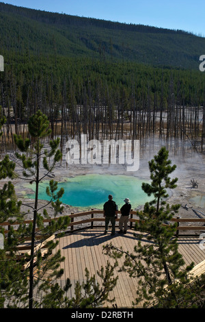 Visitors at Cistern Spring, Norris Geyser Basin, Yellowstone UNESCO World Heritage Site, Wyoming, USA