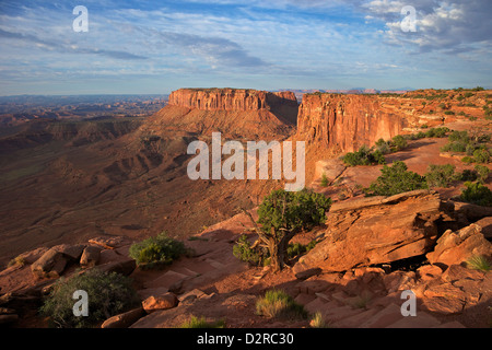 Grand View Point Overlook, Canyonlands National Park, Utah, United States of America, North America - Stock Photo