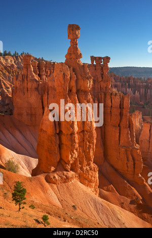 Thor's Hammer in early morning from Sunset Point, Bryce Canyon National Park, Utah, United States of America, North - Stock Photo