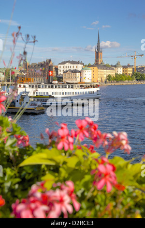 City skyline and flowers, Stockholm, Sweden, Europe - Stock Photo