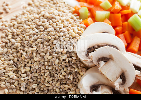 Barley mushrooms, carrots and celery ingredients for soup. - Stock Photo