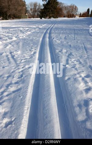 cross country skiing tracks in kinsmen park Saskatoon Saskatchewan Canada - Stock Photo