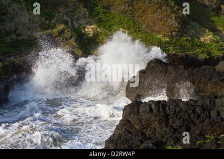 OR, Cape Perpetua Scenic Area, Devil's Churn - Stock Photo