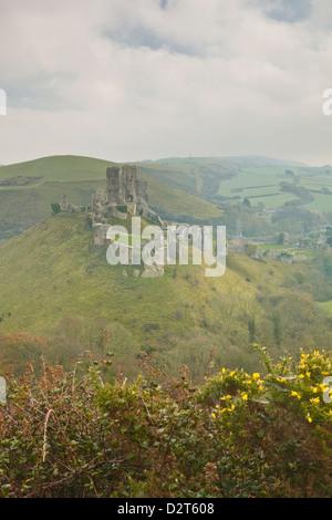 The ruins of Corfe Castle, Dorset, England, United Kingdom, Europe