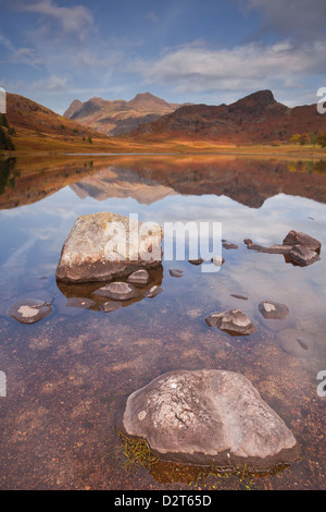 Blea Tarn and the Langdale Pikes in the Lake District National Park, Cumbria, England, United Kingdom, Europe - Stock Photo