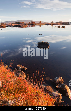 Loch Ba on a frosty morning at Rannoch Moor, a Site of Special Scientific Interest, Perth and Kinross, Highlands, - Stock Photo
