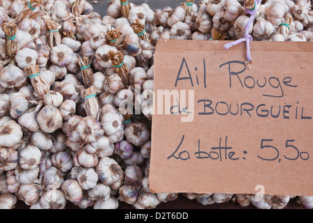 Bulbs of garlic on sale at a market in Tours, Indre-et-Loire, Loire Valley, France, Europe - Stock Photo