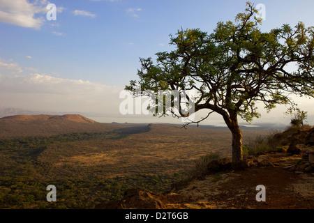 Nechisar National Park, Arba Minch (Arba Migie), Rift Valley region, Ethiopia, Africa - Stock Photo