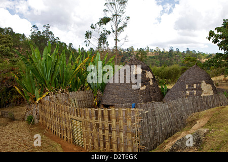 Traditional huts, Omo region, Chencha, Dorze, Ethiopia, Africa - Stock Photo
