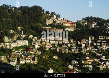 View of Shimla houses, Shimla, Himachal Pradesh, India, Asia - Stock Photo