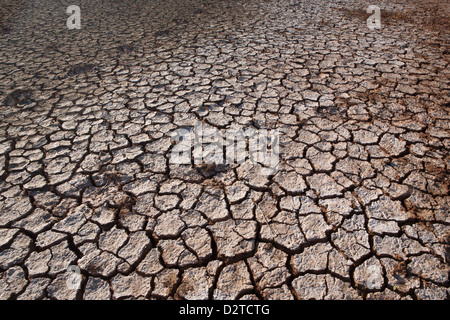 Cracked earth and salines in Sarigua national park (desert), Herrera province, Republic of Panama. - Stock Photo