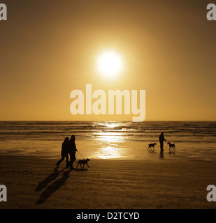 Dog walkers on beach. - Stock Photo