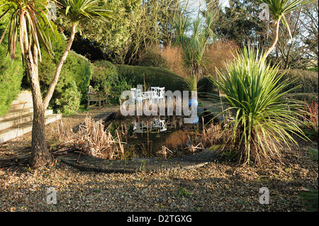 Formal garden pond with dead rushes and irises, garden table and chairs and Torbay palm trees, Cordyline australis, - Stock Photo