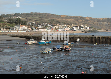Lyme Regis harbour at low tide in winter from The Cobb, with the town and beach beyond - Stock Photo